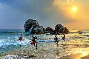 PhotoVivo Gold Medal - Kam Sze Fung (Hong Kong)  Fishing On Posts 36