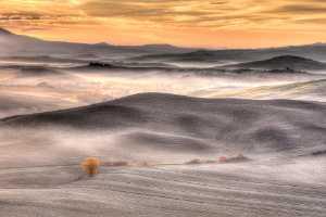 PhotoVivo Gold Medal - Simon Kovacic (Slovenia)  Tuscany 070