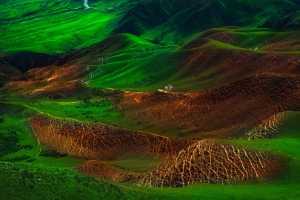 PhotoVivo Gold Medal - Jun Pan (China)  Kalajun Body Grassland