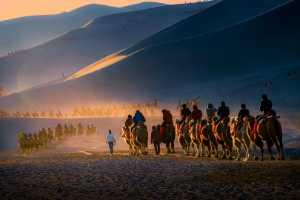 PhotoVivo Gold Medal - Mingwei Chen (China)  Desert Camels 15