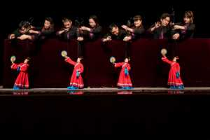 PhotoVivo Honor Mention e-certificate - Rongmao Yang (China)  Marionette 2