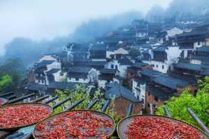 PhotoVivo Gold Medal - Weining Lin (China)  Beautiful Town 2