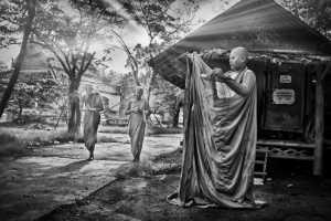 PhotoVivo Gold Medal - Tan Tong Toon (Malaysia)  Monks Robes