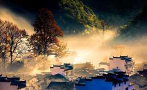 PhotoVivo Honor Mention e-certificate - Jiongzhang Huang (China)  Golden Autumn