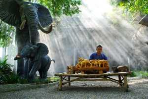 APU Honor Mention E-Certificate - Pat Choo (Singapore)  The Wood Carver