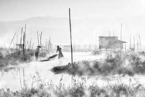 PhotoVivo Gold Medal - Htet Aung Myin (Singapore)  Legs Rowers