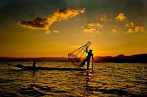 APU Honor Mention e-certificate - Chor Tian Goh (Malaysia)  FISHING AT DAWN NO.1