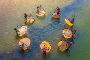 Circuit Merit Award e-certificate - Saurabh Sirohiya (India)  Fisherwoman