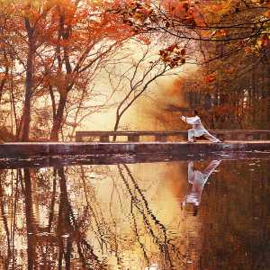 APAS Honor Mention e-certificate - Jing Gu (China)  Autumn Scenery