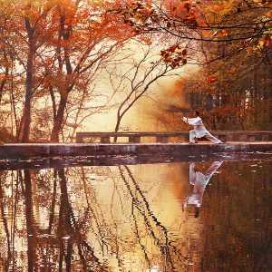 APAS Honor Mention e-certificate - Jing Gu (China)  Autumn Scenery