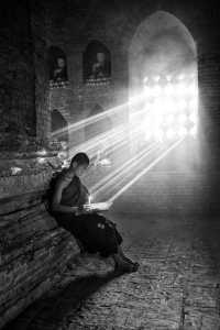 PhotoVivo Honor Mention e-certificate - Phillip Kwan (Canada)  Monk Reading