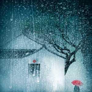 APU Gold Medal - Lixin Li (China)  Autumn Stories