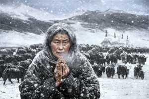 FIP Gold Medal - Arnaldo Paulo Che (Hong Kong)  Pray 3