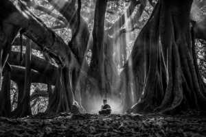 Raffles Gold Medal - Hein Htet (Myanmar)  Novice Under The Tree