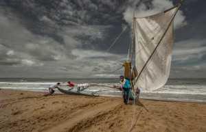 Circuit Merit Award e-certificate - Pandula Bandara (Sri Lanka)  Going To Sea