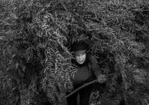 ICPE Gold Medal - Quansheng Ma (China)  A Woman Carrying Firewood