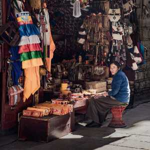 PhotoVivo Gold Medal - Cheng Zhu (China)  The Shopkeeper