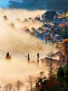 Circuit Merit Award e-certificate - Tong Hu (China)  The Foggy Countryside