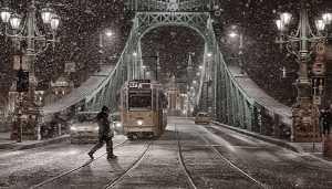 PhotoVivo Honor Mention E-Certificate - Csaba Jakus (Hungary)  Winter In Budapest