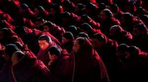 PhotoVivo Gold Medal - Mingzai Su (China)  Look Back