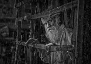 APAS Gold Medal - Shehan Trek (Sri Lanka)  Rainy Day