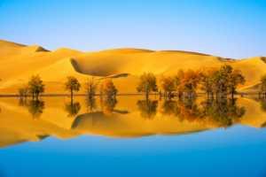 PhotoVivo Gold Medal - Fengying Long (China)  Xinjiang Landscape19