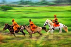 PSA HM Ribbons - Pui-Chung Yee (Singapore)  Horse Racing Monks