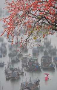 APAS Honor Mention e-certificate - Jian Li (China)  Lingnan Water Village