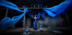 PhotoVivo Honor Mention e-certificate - Ying Mei (China)  Blue Fairy