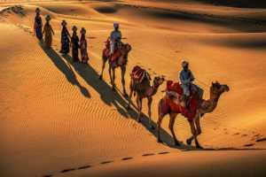 PhotoVivo Gold Medal - Binyuan Li (China)  Desert Camels13