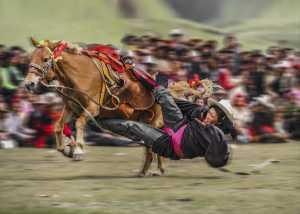 PhotoVivo Gold Medal - Ruimin Zhao (China)  Great Skill