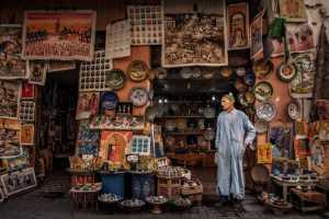 PhotoVivo Gold Medal - Jianjun Liu (China)  The Shop