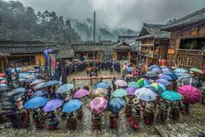PSA Gold Medal - Juanjuan Shen (China)  Dragon Recruitment In The Rain