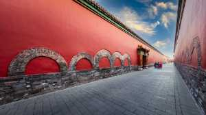 PhotoVivo Honor Mention e-certificate - Li Zhao (China)  Under The High Red Wall