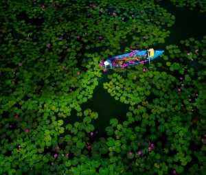 Raffles Photo Gold Medal - Ngon Le Thanh (Vietnam)  Gun Pond