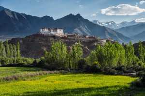 APAS Honor Mention e-certificate - Min Tan (Malaysia)  Beautiful Ladakh