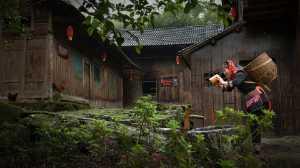 PhotoVivo Gold Medal - Shubin Qing (China)  Hongzhai Is My Hometown 2