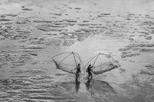 PhotoVivo Gold Medal - Shunjin Chen (China)  Life In The Mud