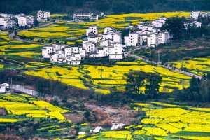 PhotoVivo Gold Medal - Yonghe Wang (China)  Splendid Homeland