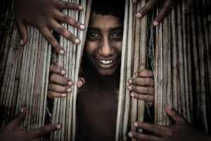 PhotoVivo Honor Mention e-certificate - Saurabh Sirohiya (India)  Playing Seek And Hide