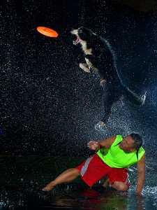 PSM Bronze Medal - Mao Yuan Chen (Taiwan)  Water Dog