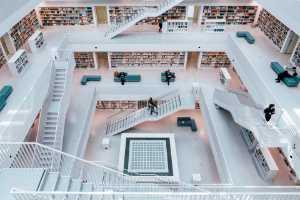 PSA Gold Medal - Md Tanveer Hassan Rohan (USA)  Stuttgart City Library