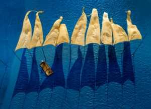 ICPE Gold Medal - Chaoyang Cai (China)  Blue