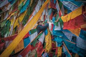 PhotoVivo Honor Mention e-certificate - Zhi Xu (China)  Hanging Prayer Flags