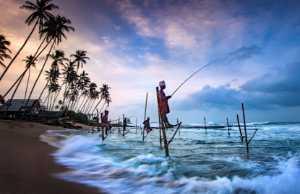 APAS Gold Medal - Qiusheng Hu (China)  Stilt Fishing