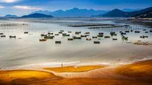 RPST Honor Ribbon - Faliang Wang (China)  Life Over The Sea
