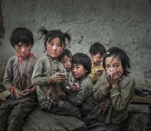 PhotoVivo Honor Mention e-certificate - Yan Wang (China)  Gazing