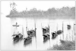 APU Honor Mention e-certificate - Yan Wong (China)  Boats In A Row