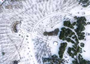 SIPC Merit Award - Jianwei Ma (China)  Snow