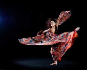 PhotoVivo Honor Mention e-certificate - Woodpecker Huang (Taiwan)  Tdancer